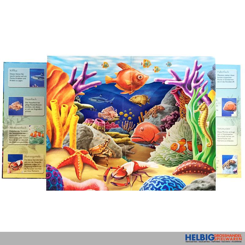 unsere ozeane buch