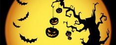 Halloween - St. Martin