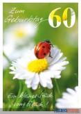 """Glückwunschkarte 60. Geburtstag """"Marienkäfer"""""""