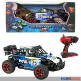 """RC-Rallye-Auto """"Wild Buggy Racer"""" 1:16"""