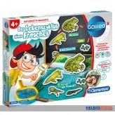 """Galileo Science """"Der Lebenszyklus eines Frosches"""" Lernspiel"""