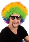 """Perücke """"Afro"""" Regenbogenfarben"""